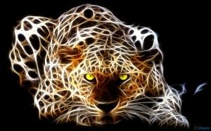 Cheetah_Fotor_20140905